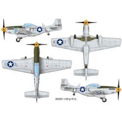 Easy Model P-51D 463607 1:48 (39325)