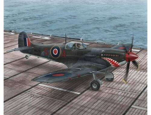 Special Hobby Supermarine Seafire Mk.II Torch   Avalan 1:48 (48102)