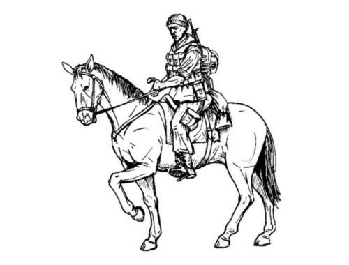 CMK US mouted soldier in Afganistan 1 fig. horse 1:35 (F35208)