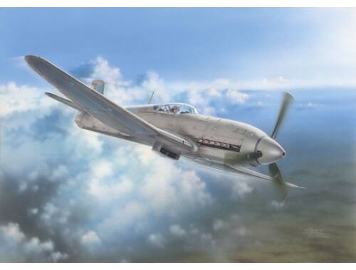 Special Hobby Heinkel He 100D Soviet and Japanese Plan 1:32 (32045)