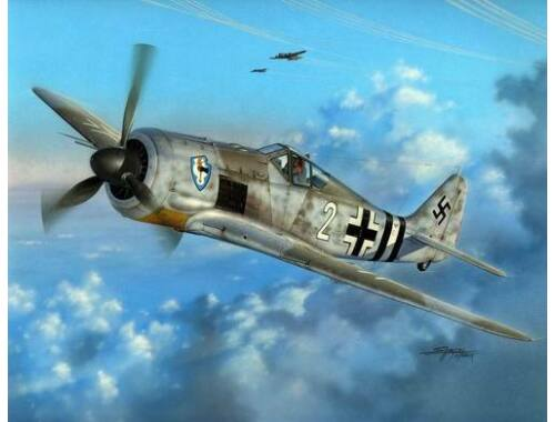 Special Hobby Focke Wulf Fw 190A-6 'Early Sturmbirds' 1:48 (48103)
