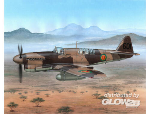 Special Hobby Fairey Firefly FR Mk.I Foregin Post War 1:48 (48151)