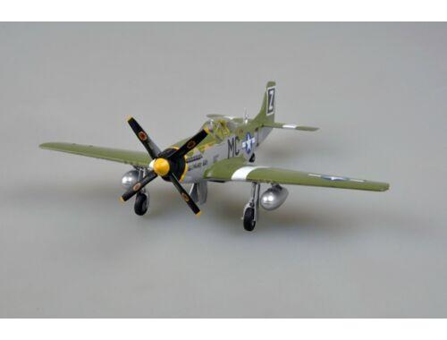 Easy Model P-51D 79FS 1:48 (39302)