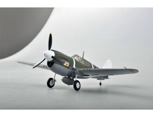 Easy Model P-40M 44FS,18FG 1:48 (39311)