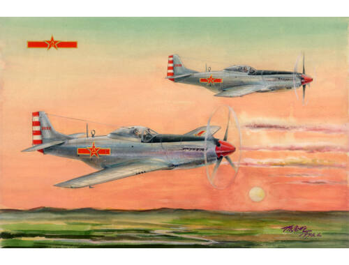 Hobby Boss PLAAF P-51D/K Mustang Fighter 1:48 (85807)