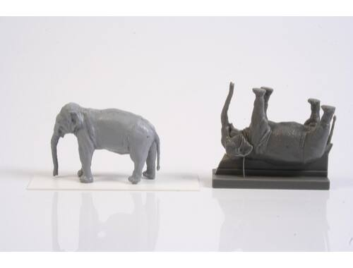 CMK Asian Elephant (1 figure) 1:72 (F72328)