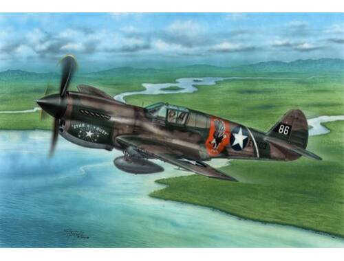 Special Hobby P-40E Warhawk Claws and Teeth 1:72 (72338)